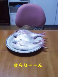 20120722_2_2.jpg