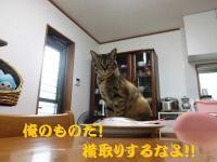 20120722_2_6.jpg
