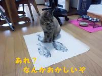 20120722_2_8.jpg