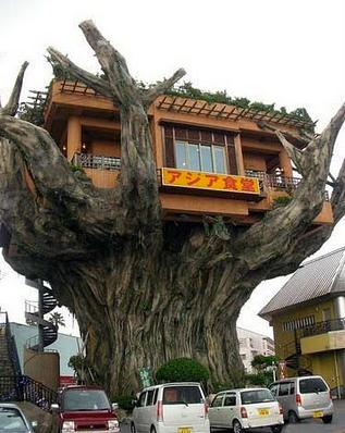 沖縄のアジア食堂01