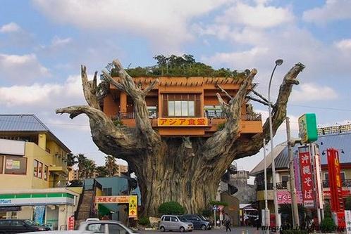 沖縄のアジア食堂02