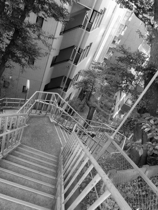 西新橋探索、愛宕神社(6)