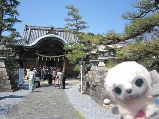 2012_shiki4_C