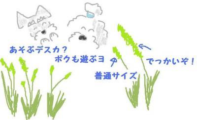 12080301_convert_20120803124353.jpg
