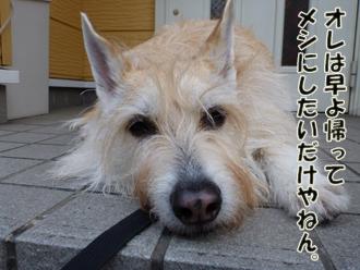 2012_04140012.jpg