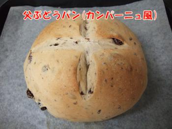 2012_04220027.jpg