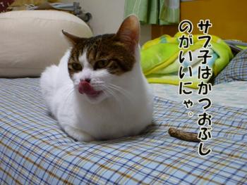 2012_05030014.jpg
