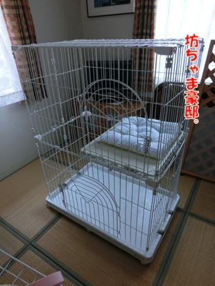 2012_05260005.jpg