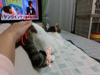 2012_05280156.jpg
