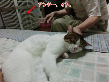2012_06160102.jpg