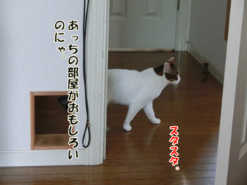 2012_07150003.jpg