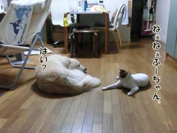 2012_07180017.jpg