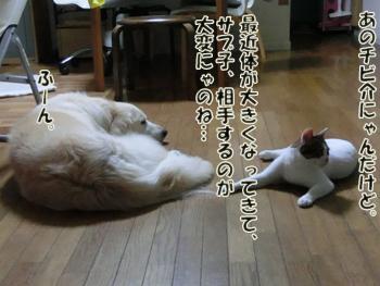 2012_07180018.jpg
