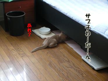 2012_07230003.jpg