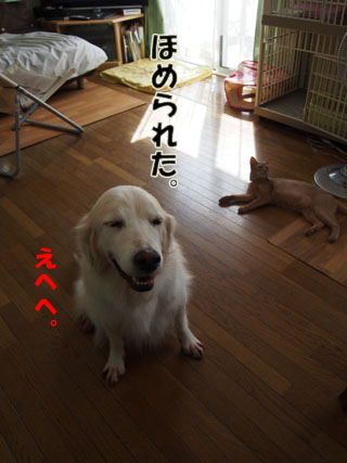 P9270118.jpg