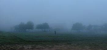 fog0917120.jpg