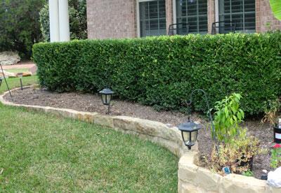 garden102512.jpg