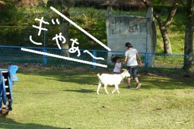 20120428キャンプ1日目 (3)