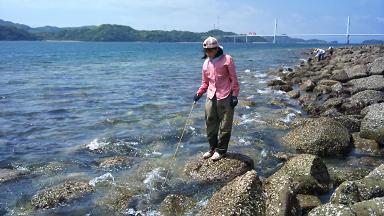 2012-05-04 箱苗アラカブ (1)