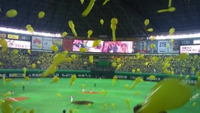 20120505やふードーム (3)