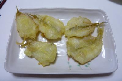 20120609キス釣り (1)