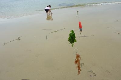 20120707釣り (3)
