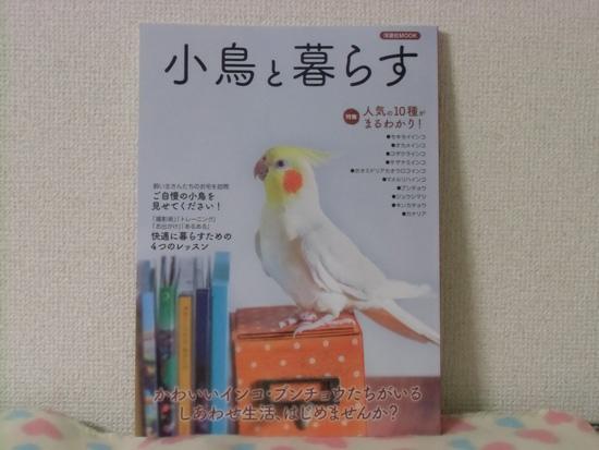 『小鳥と暮らす』