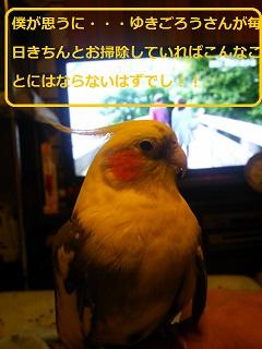 DSC_0629.jpg