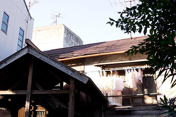 トリエンナーレ6-1