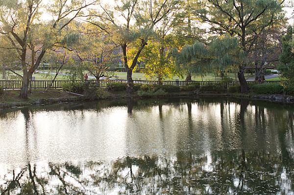 平和公園-9