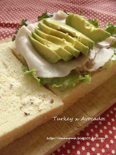 Turkey Avocado