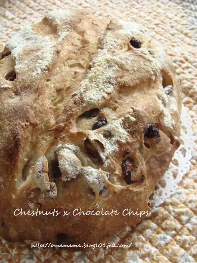 Chestnuts_20131004081118116.jpg
