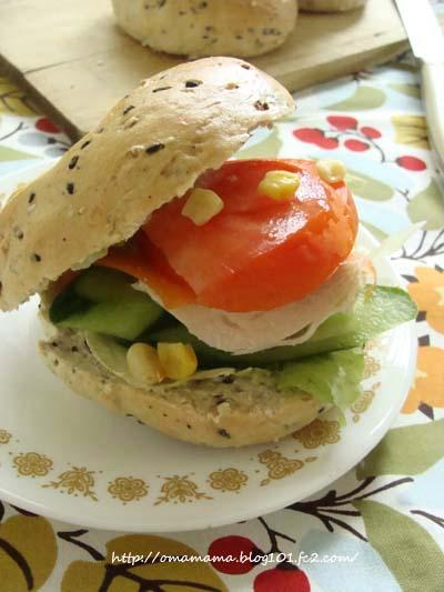 Sandwich_20130814102353474.jpg