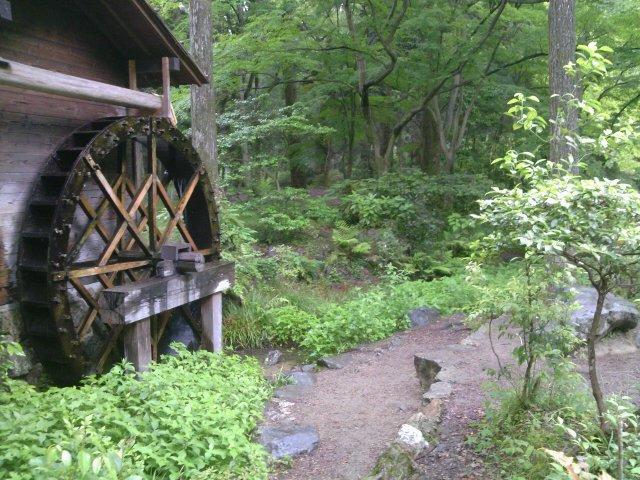 京都植物園12水車