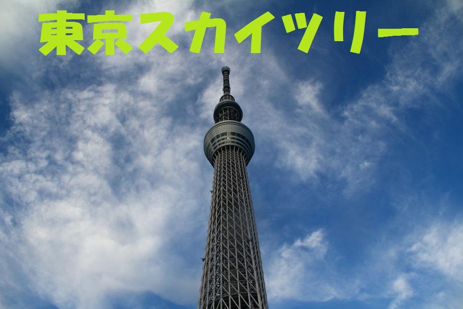 IMG_9308_20121017103913.jpg