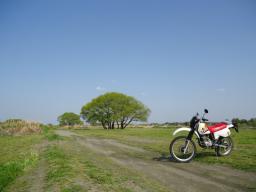 散バイク (5)