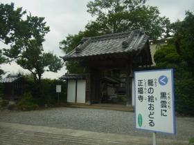 うどん県行きタイガー (9)