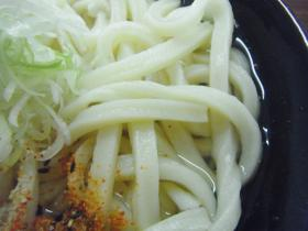 うどん県行きタイガー (4)