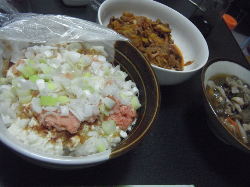 ズボラ燃やし (11)