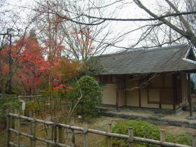 3桜庭園 (1)
