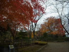 3桜庭園 (2)