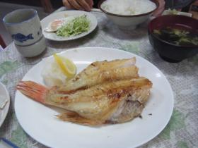 1不真面目な味(鍋) (23)