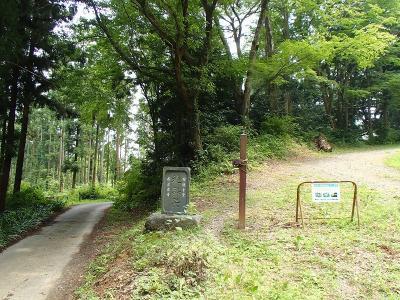 2林道ゴー? (1)