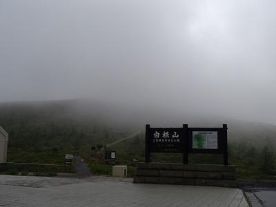 霧不帰 (6)