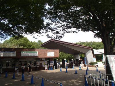 社長横綱 (1)