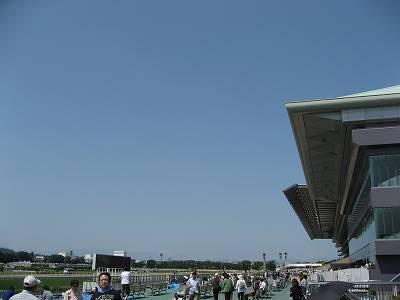 絶好の天候に恵まれた東京競馬場