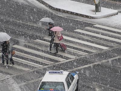 雪が降る名古屋市内