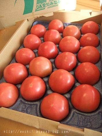 愛知トマト
