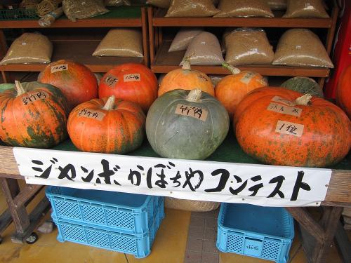 名古屋-敦賀ツーリング・ジャンボかぼちゃコンテスト
