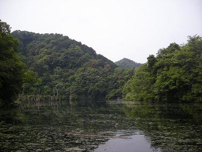 20120602-01.jpg